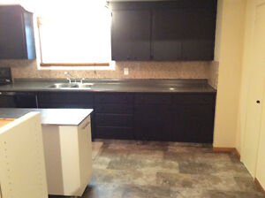 Newly renovated Bright large 3 Bdrm unit is a must see!
