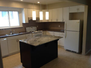 Totally Renovated 3 Bedroom  House