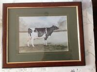 """LIMITED EDITION """"FRIESIAN COW"""" FRAMED PAINTING by artist C.Marshall"""