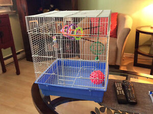 Bird Cage and accessories