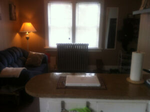 cozy apt - close to downtown DRYDEN - available Oct.1