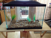 20 gallon marine land fish tank