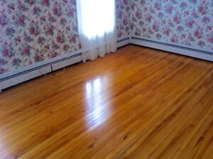 Oversized lovely 3Br, Heat + WIFI incl. Wash/dry, mature buildin