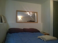 Now/Jan. 15 nice furn. room in a shared house in Central