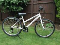 Teenagers / Ladies British Eagle mountain bike £40 ono