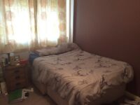 Room to let- free. Females only