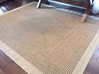 Beautiful Allen and Roth Area Rug  8' X 10'  Excellent condition