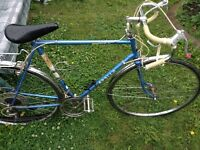 "Apollo 21"" frame Road Commuter Bike 12 speed"