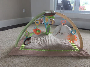 Fisher Price My Little Snuggle Bunny Musical Gym