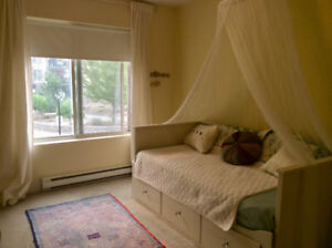 Room and private bath for rent