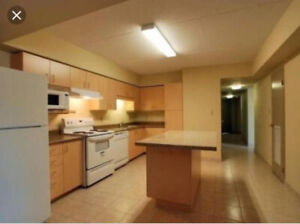 Student Apartment- Sublet 1 Bedroom (May - August)