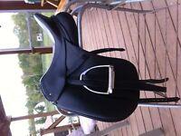 Dressage Saddle For Sale Schleese Jess Elite Size 17