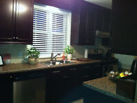 January 1st rental with private ensuite bathroom - no lease !!