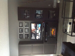 Living room cabinets and fireplace
