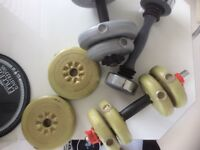 2 York dumbells and shaker dumbell