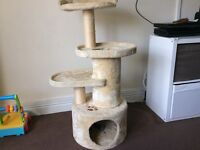 Cats Adventure Scratcher used but Excellent Condition