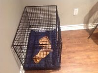 Dog Crate - Cage pour chien