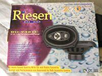 Riesen Car speakers 250 watts