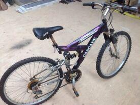 Mountain Ridge Cascade mountain bike.