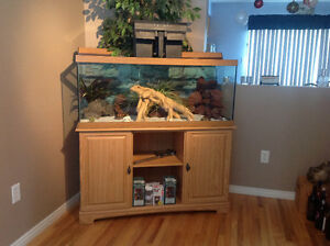 80 Gallon Aquarium