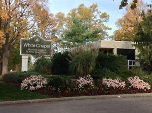 Three Burial Plots at White Chapel Cemetery in Hamilton