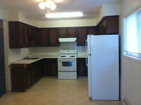 Newly Renovated Apartments - NOW SHOWING!