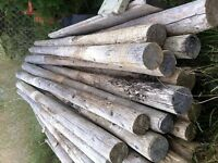 "4"" x 8' Pressure Treated Fence Posts"
