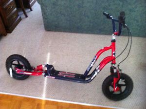 Deluxe Scooter $85