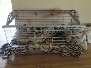 Living world critter cage size large