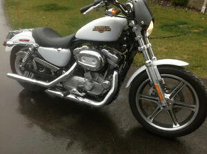 2008 Sportster (Mint Condition) Very Low
