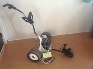 Power golf cart