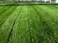 Selling A House? Need Yard/Snow Maintenance? We can help!