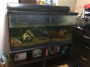 90 gallon aquarium fish tank with stand HAM