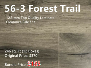 12.3 mm Laminate On Clearance Sale! 12 Boxes for Only $185!