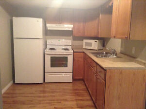 1 Bedroom Basement suite on Sask side/Utilities included