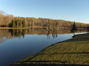 Your Own Piece of Paradise with Your Own Private Lakes, Minden Kawartha Lakes Peterborough Area image 10