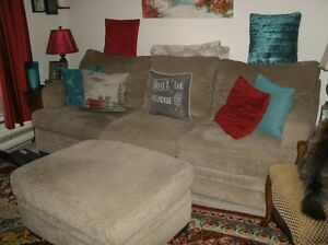 Chenille couch new price