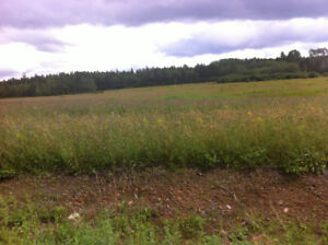 70 acres of land