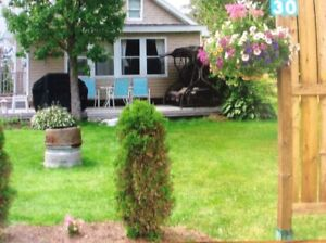 Cottage in Cocagne Cape sleeps 6