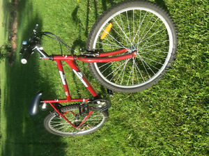 Ladies 6 speed mountain bike excellent condition