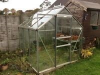 Greenhouse approx 4x6.