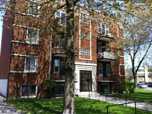 NDG  5½   Near Loyola campus  775.00$