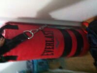 BRAND NEW EVEREST PUNCHING BAG