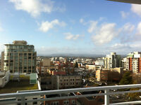 11th FLOOR DOWNTOWN CONDO WITH GORGEOUS VIEWS for rent