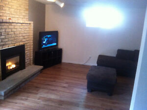 Newly renovated 2 Bedroom Basement apartment