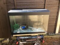 Fluval complete tropical aquarium fish tank set up