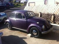 Volkswagon Beetle 1300 (tax ex 72 ) DUG the BUG