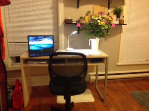 Ideally located student room - winter sublet