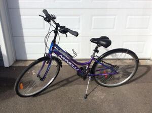 Minelli bicycle
