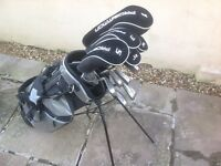 Full set of Stainless Steel Stanley Rogers clubs and Bag